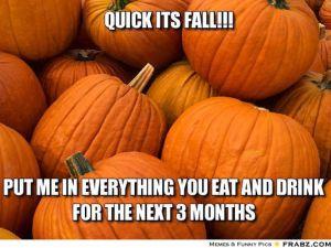 1412393417000-fall-meme-4