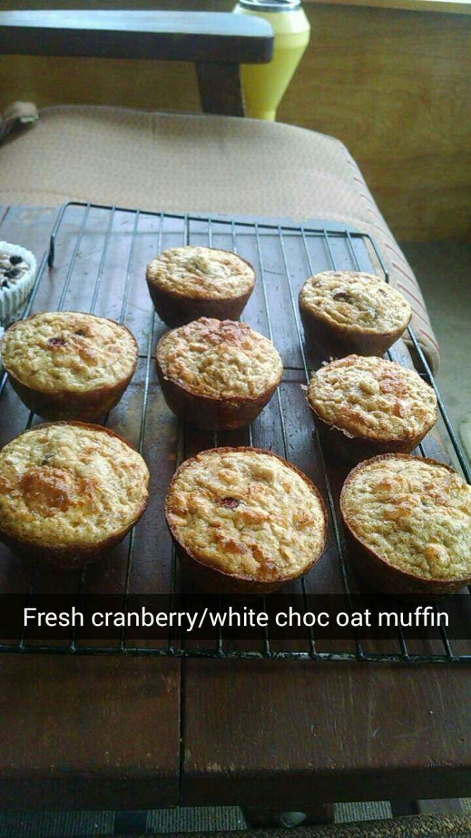 White Chocolate Cranberry Oat Muffins